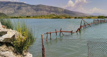 traditional fish traps