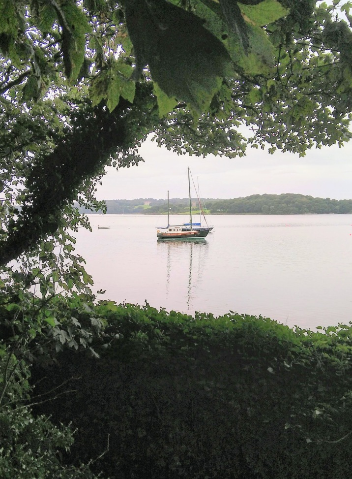 View across the lough from Nugent's Wood