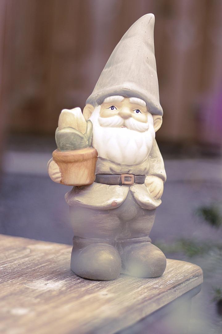 garden-gnome-4461676_1920