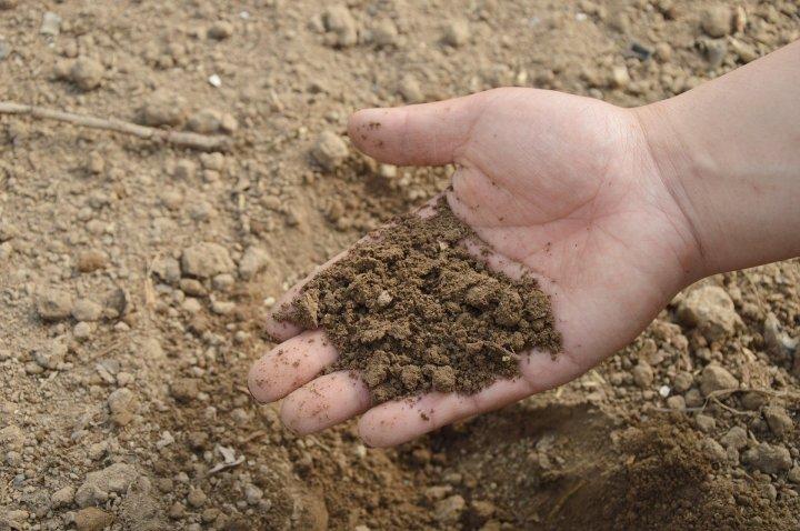 soil-766281_1920